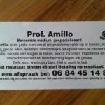Prof Amillo